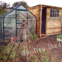 A Wood Burner and a Shed
