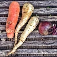 Homemade Root Vegetable Crisps