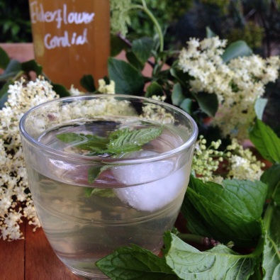 elderflower cordial2