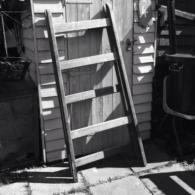 abandoned ladder