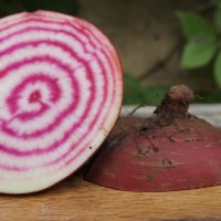 How to make Beetroot & Apple Slaw