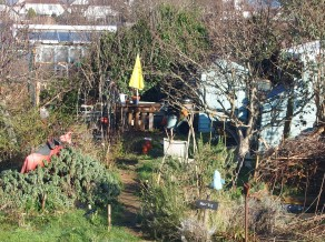 allotment february